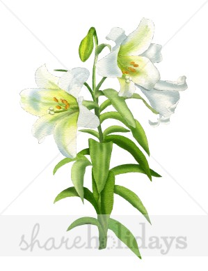 Easter Lilies Border Clip Art .., Easter Lily Free Clipart.