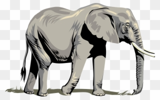 Free PNG Elephant Clipart Clip Art Download.