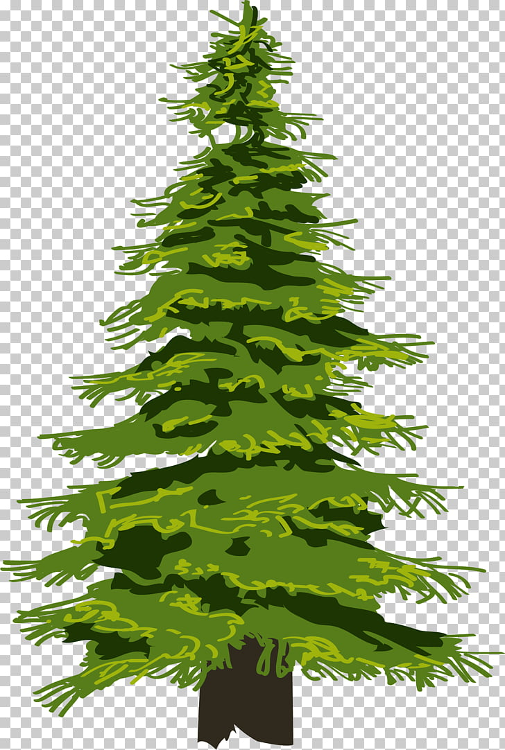Evergreen Tree Pine Drawing Fir, tree PNG clipart.