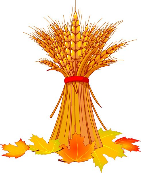 Top autumn leaves clip art free clipart image.