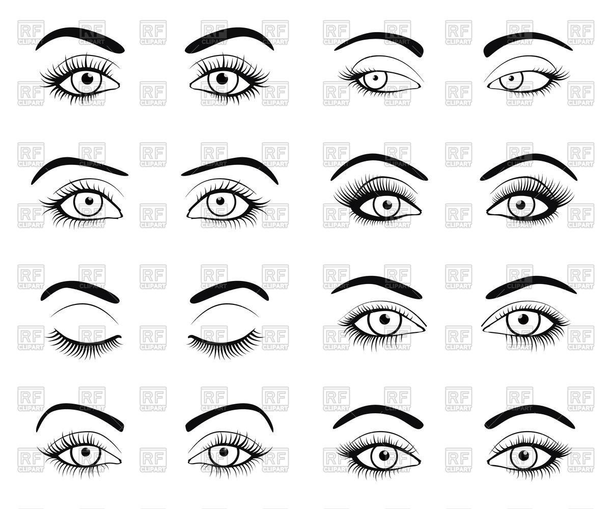 Set of female eyes and brows with beautiful fashion eyelashes.