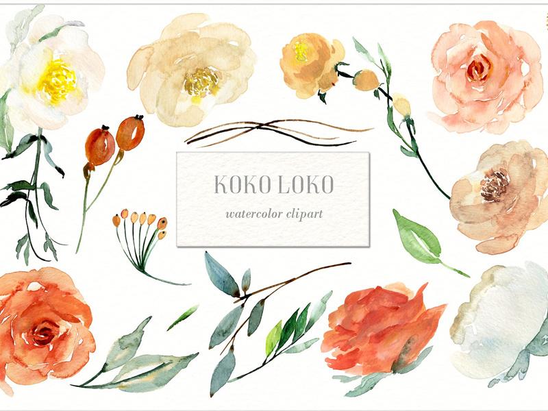 Koko Loko. Watercolor floral clipart.