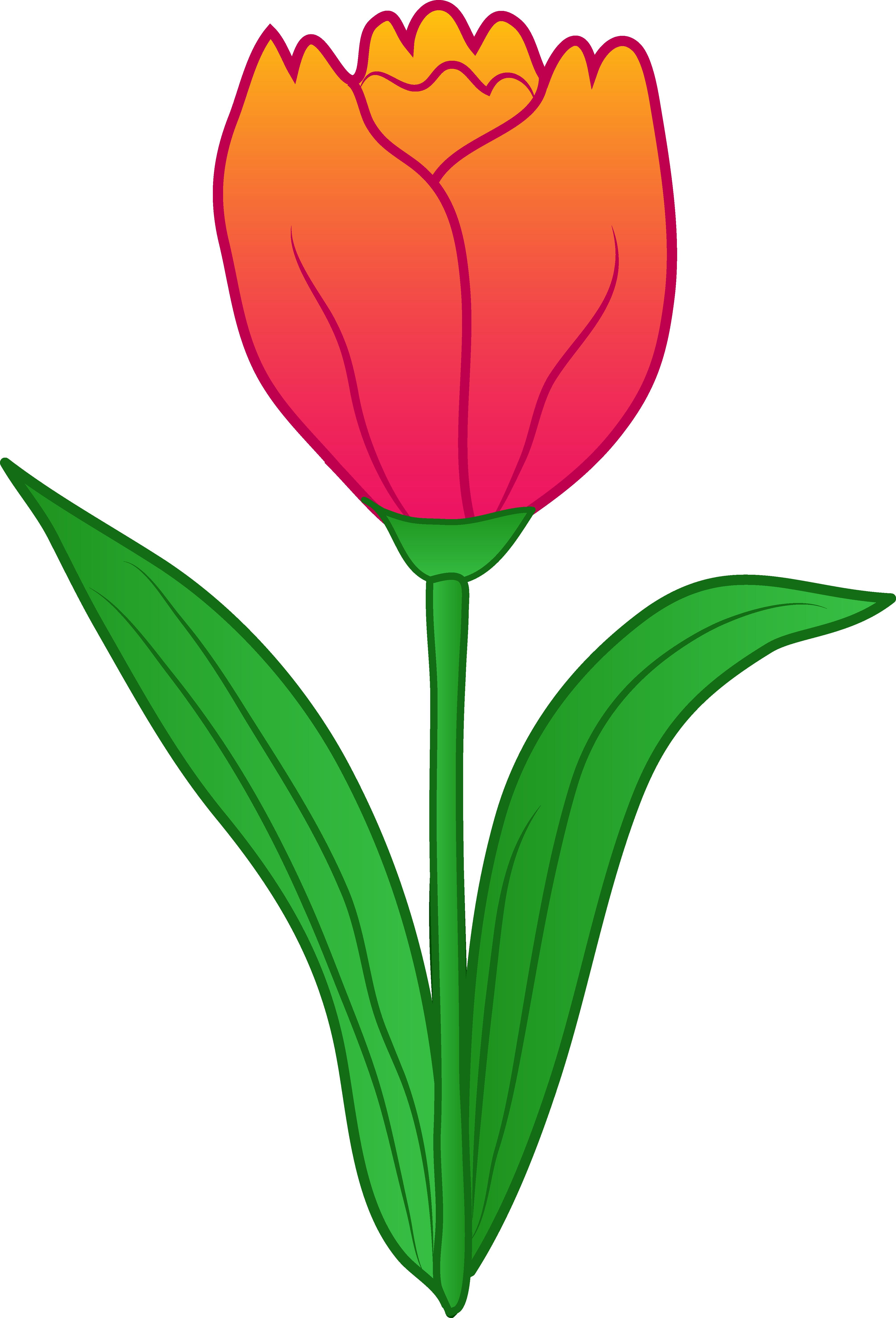 Free Free Tulip Clipart, Download Free Clip Art, Free Clip.