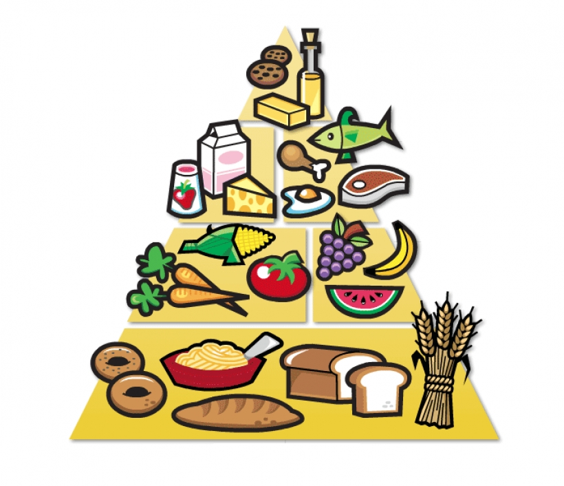 food guide pyramid recommended daily allowance