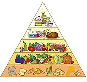 Food Pyramid Stock Illustrations.