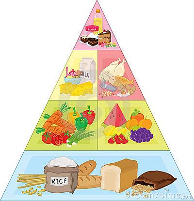 Clipart Food Pyramid.