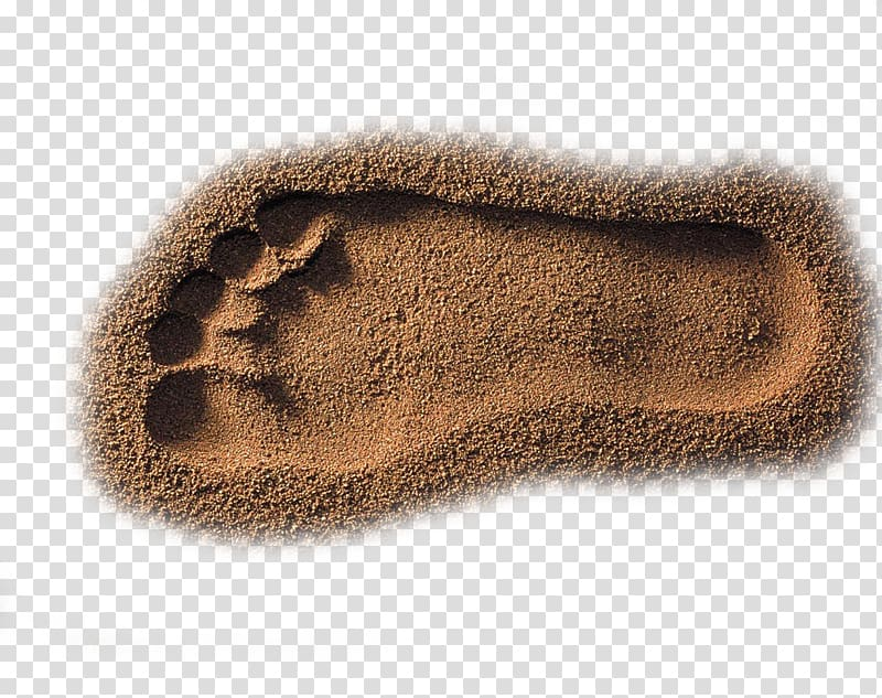 Beach Sand, Nice beach footprints transparent background PNG.