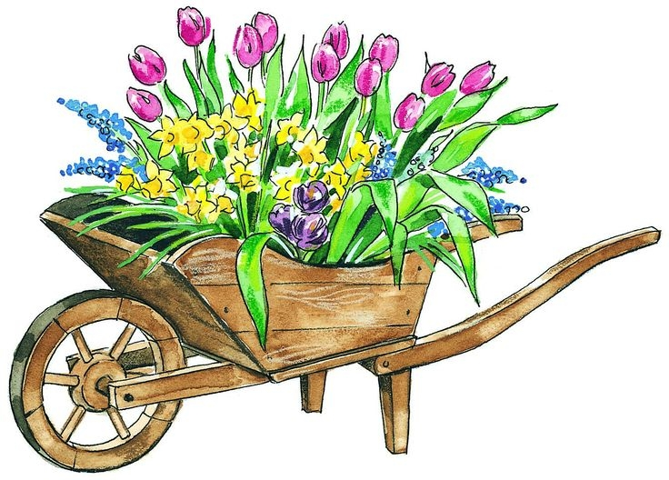 Free Clipart For May Flowers May Flowers Clip Art 1 Kaufman County.