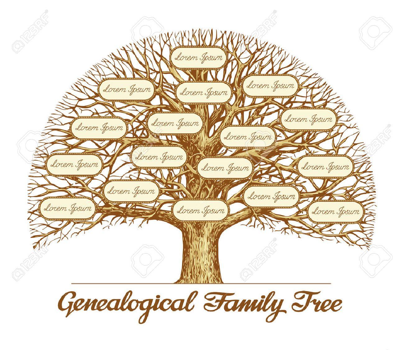 Vintage Genealogical Family Tree. Hand drawn sketch illustration.