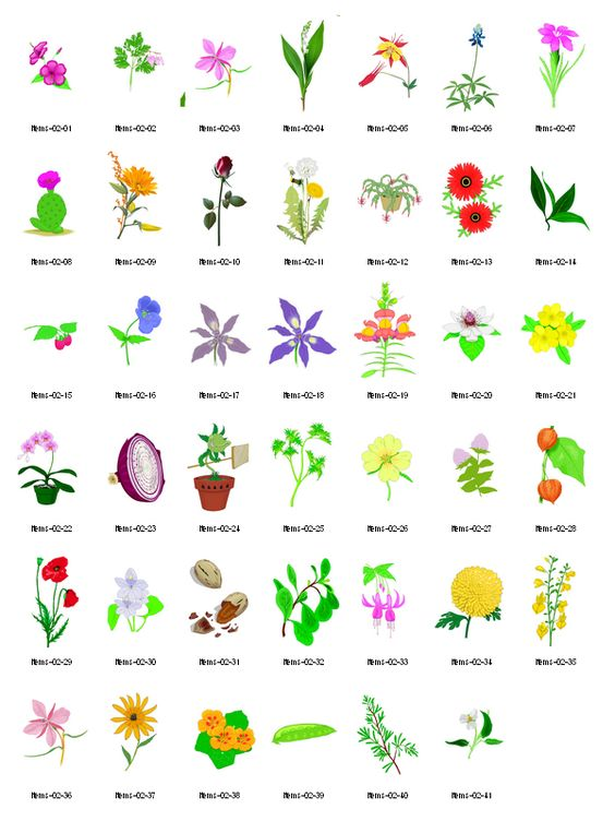 Free Clipart Herbs And Their Uses.