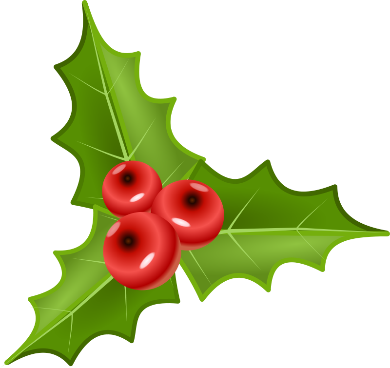 Free Clipart: Houx, holly.