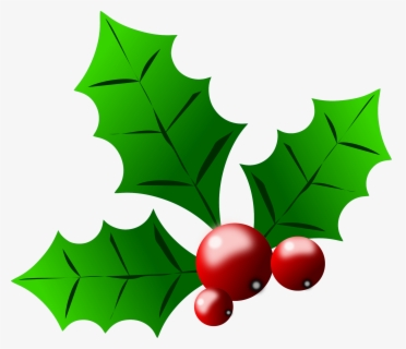 Free Holly Free Clip Art with No Background.