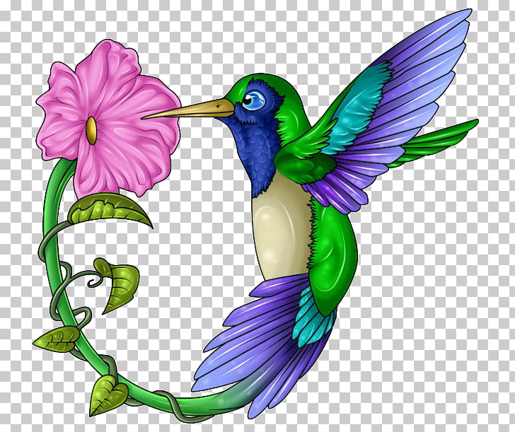 Hummingbird Beak Wing Feather, Hummingbird Tattoos Free PNG.