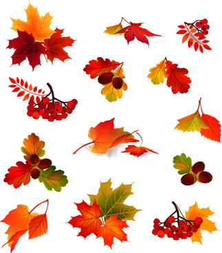 Clipart autumn leaves free vector download (6,551 Free vector) for.