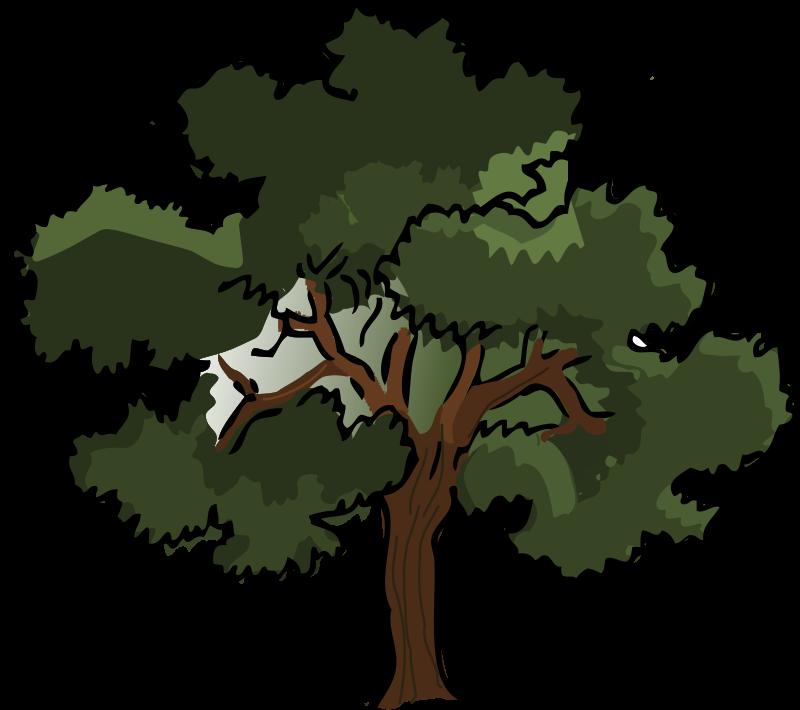Free Clipart: Oak tree.