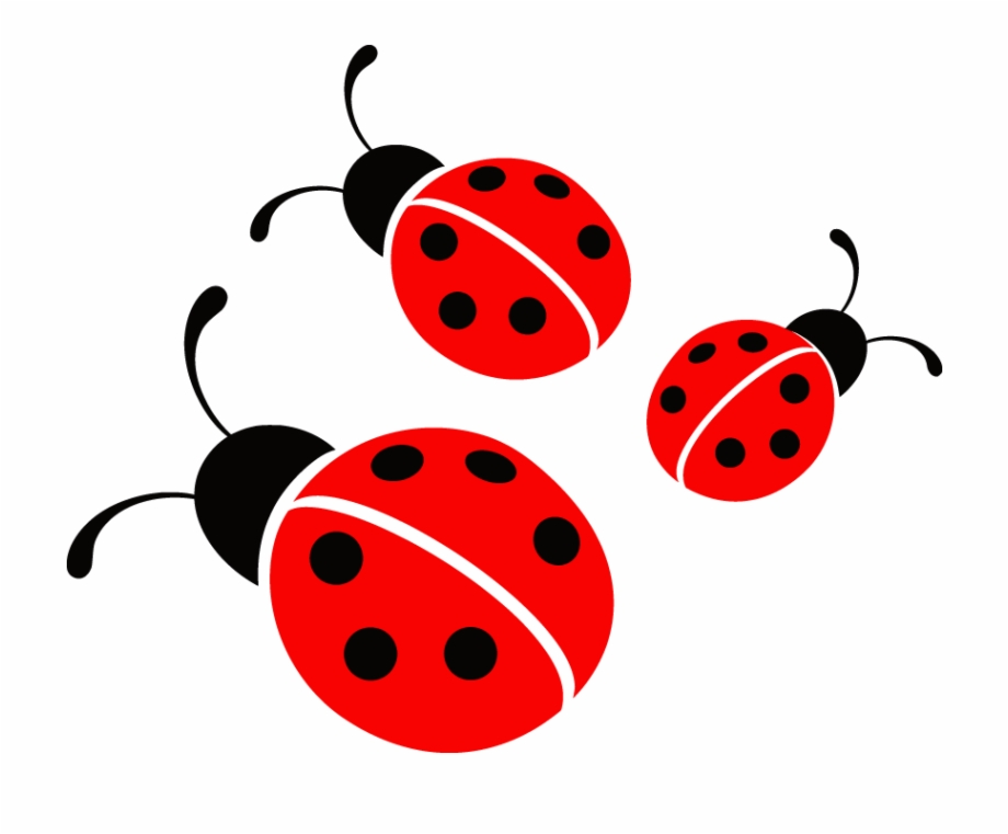 Ladybugs Clipart Free Download.