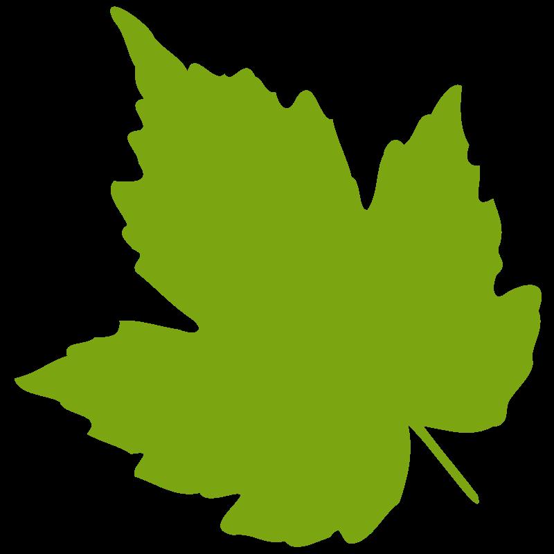 Free Clipart: Leaf 04.