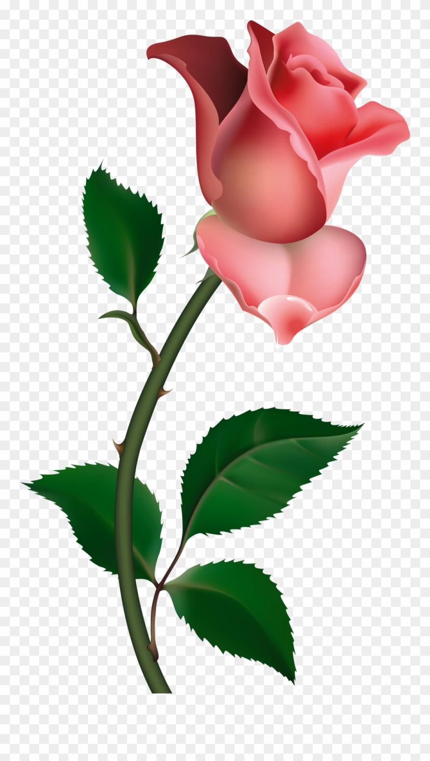 Roses Clip Art.
