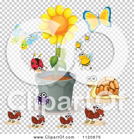 Cartoon Of Insects Around A Potted Sunflower.