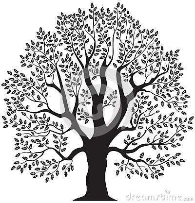 Free Clipart Line Drawing Live Oak Tree.