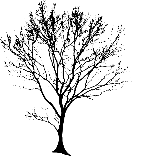 Free Clipart Line Drawing Tree.