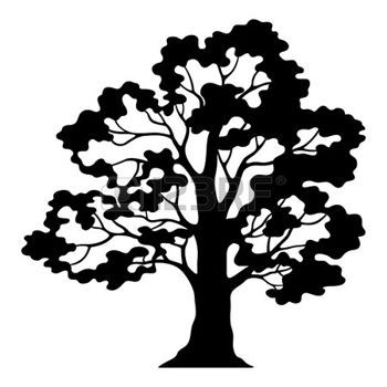17 Best ideas about Oak Tree Drawings on Pinterest.