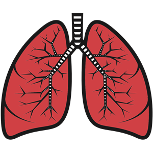 Lungs clipart, cliparts of Lungs free download (wmf, eps.