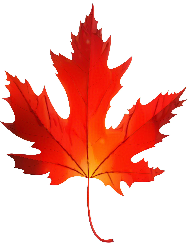 Hillegas Sugar Camp Maple leaf Clip art Maple syrup.