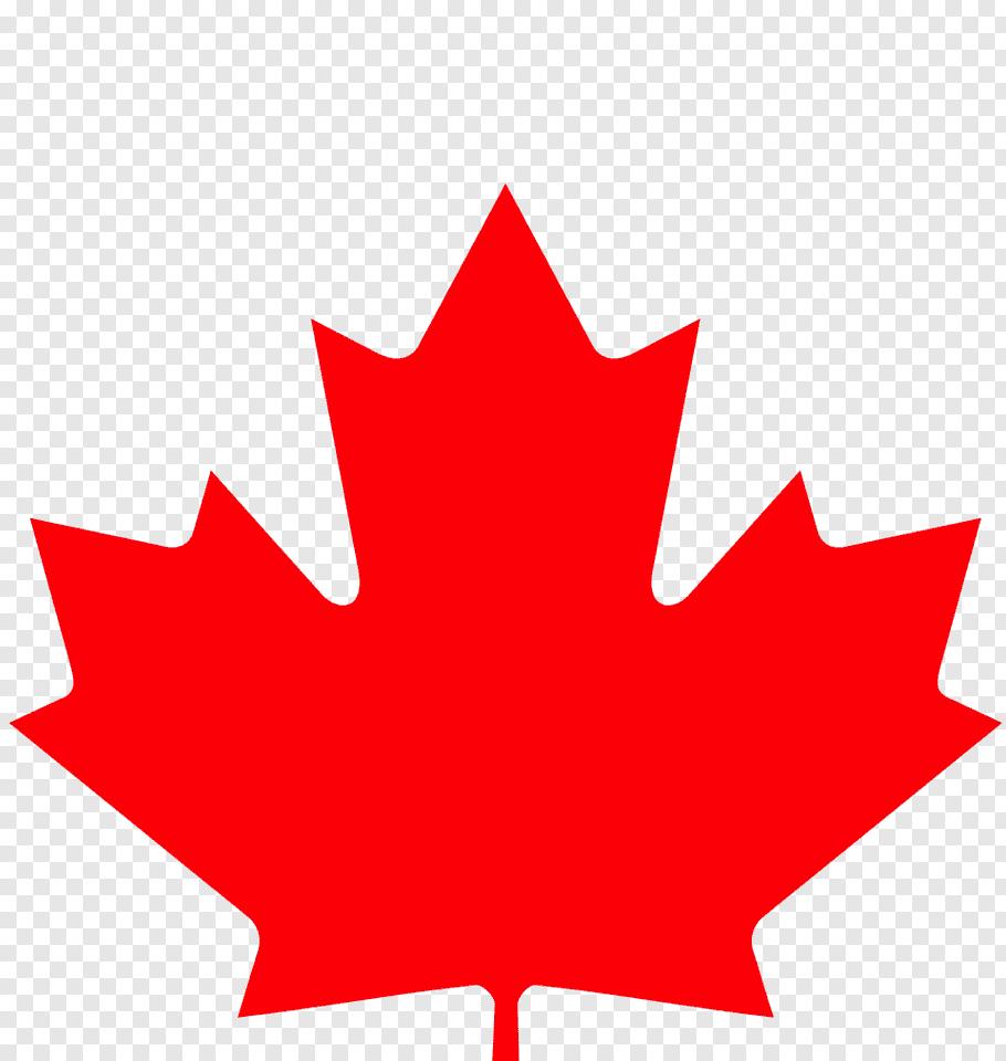 Canada Maple Leaf, Canada Day, Flag Of Canada, Tshirt.