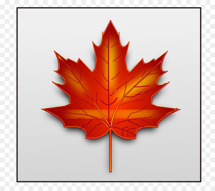 Canada Maple Leaf clipart.