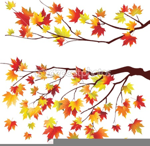 Free Clipart Maple Tree.