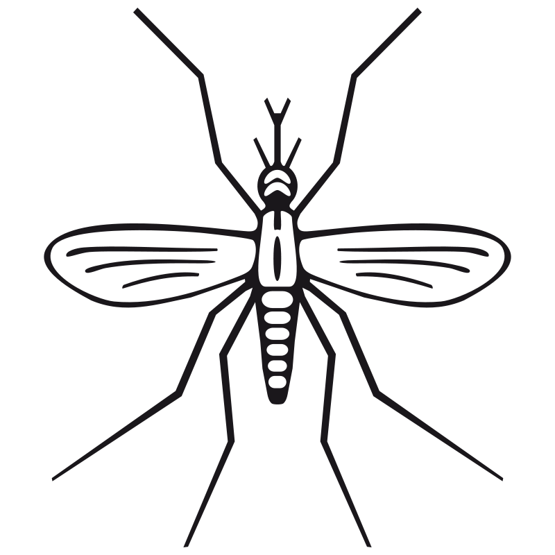 Free Clipart: Mosquito.