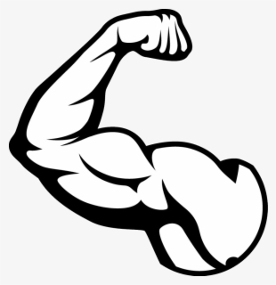 Free Muscles Clip Art with No Background.