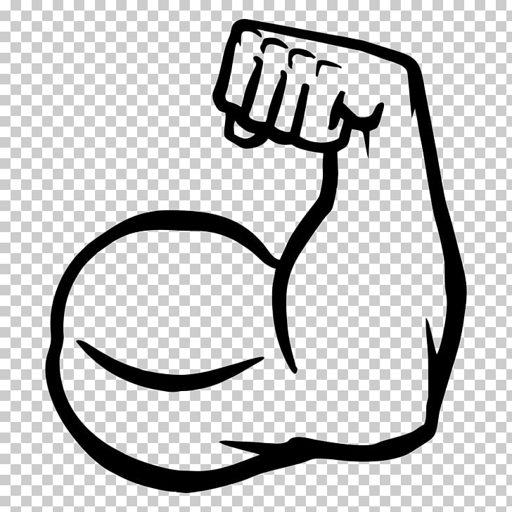 Muscle arms Muscle arms Biceps , muscles PNG clipart.