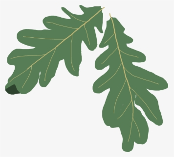Free Oak Leaves Clip Art with No Background.