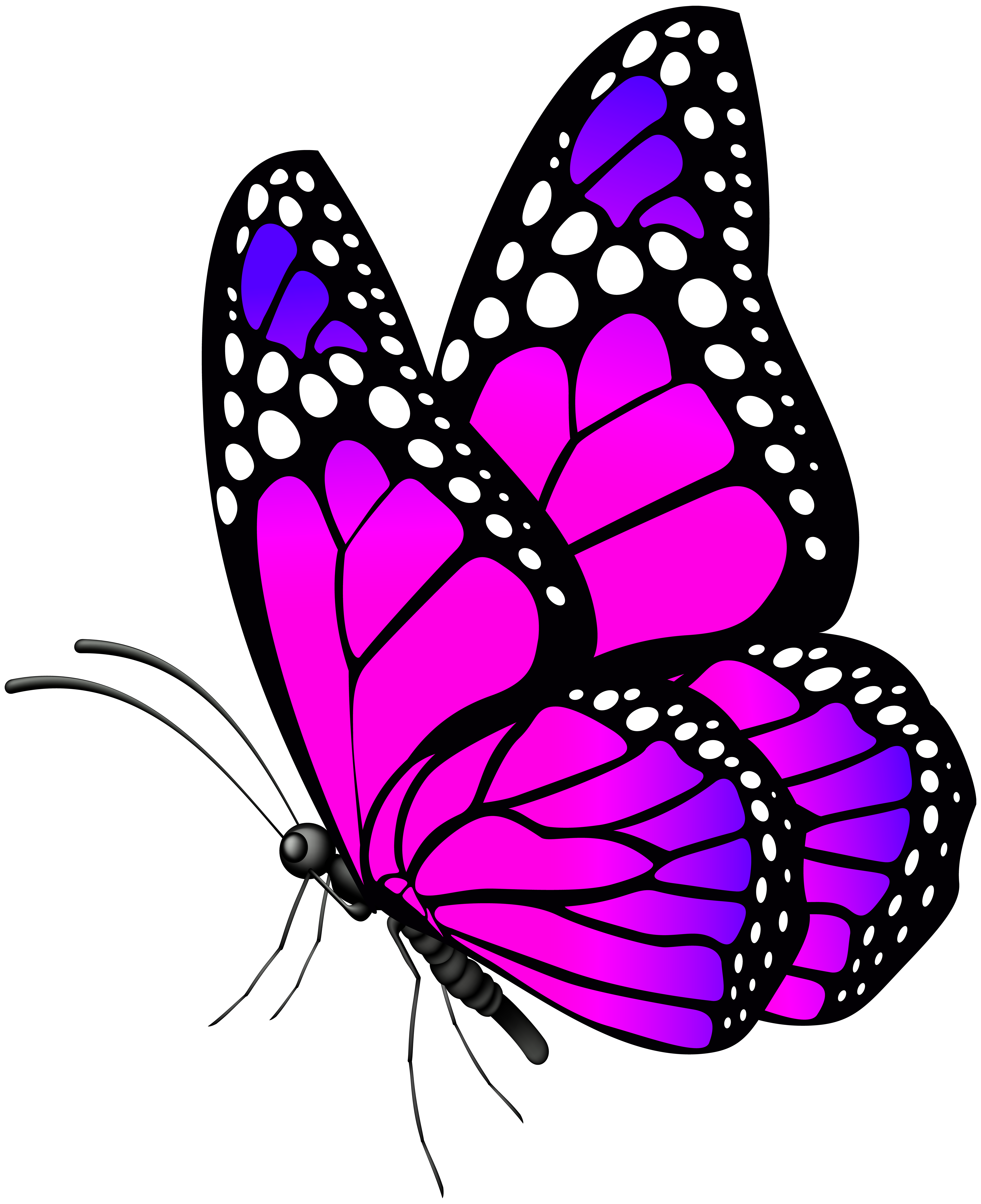 Butterfly Pink PNG Clip Art Image.