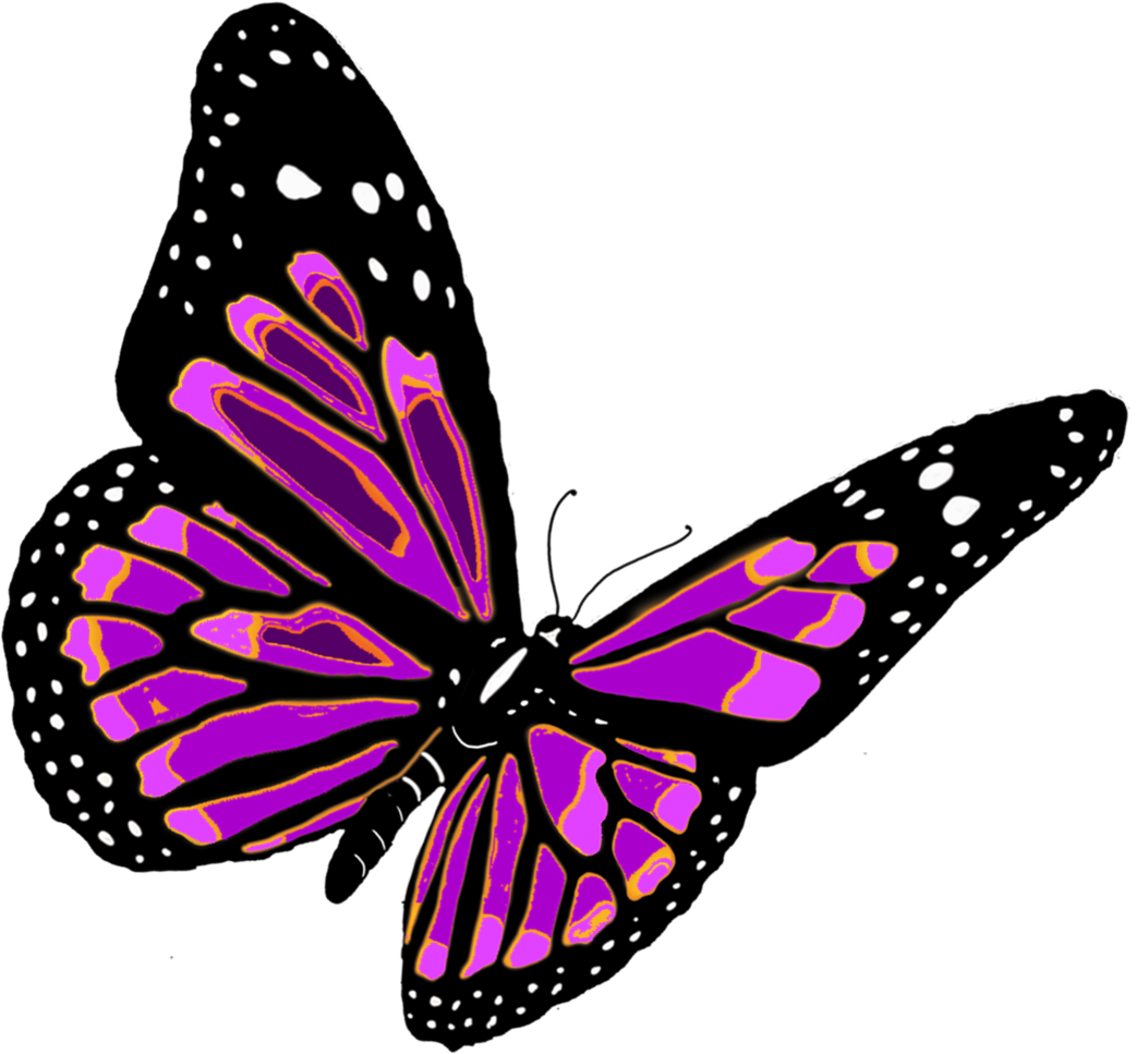 Butterflies Free Clipart Pictures #26539.