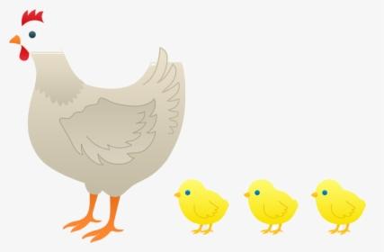 Chicken Hen Kifaranga Rooster Clip Art Baby Chick Clipart.