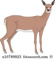 Deer Clip Art and Illustration. 25,462 deer clipart vector EPS.