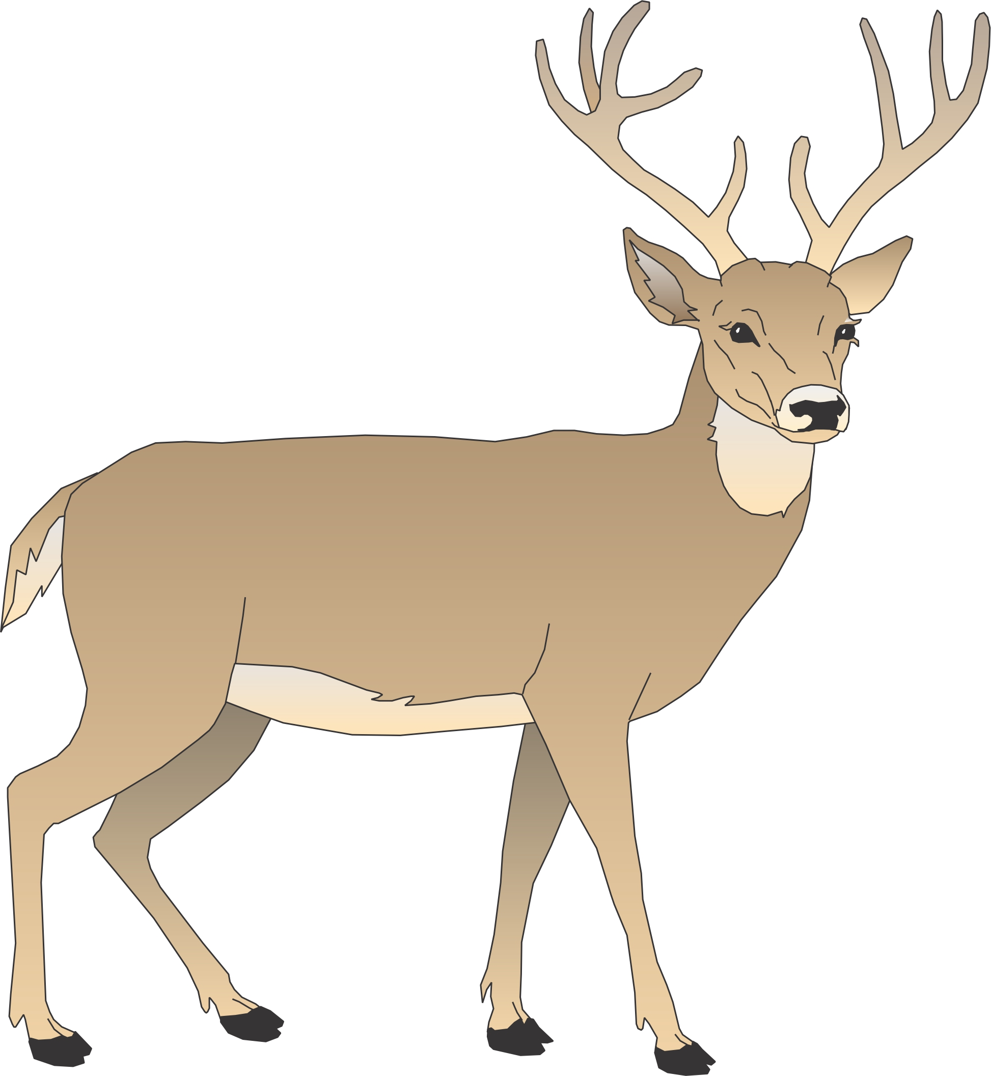 free clipart of deer #8