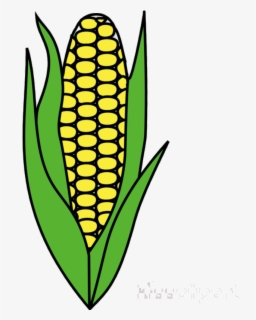 Free Indian Corn Clip Art with No Background.