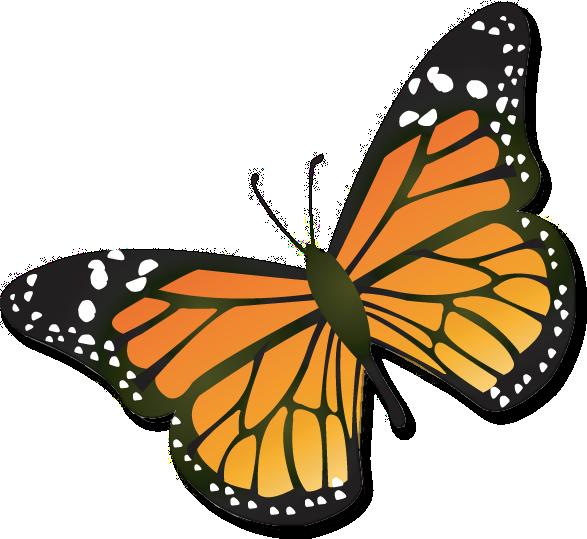 Free Monarch Butterfly Cartoon, Download Free Clip Art, Free.