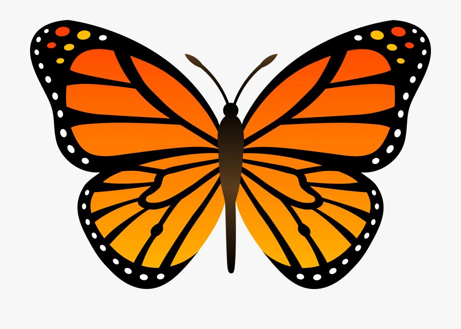 Monarch Butterflies Clipart.