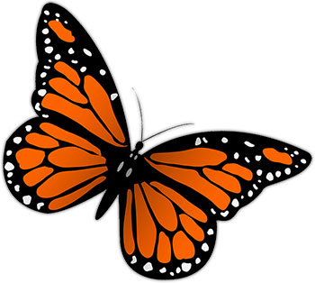 Monarch butterfly free butterfly graphics images of.