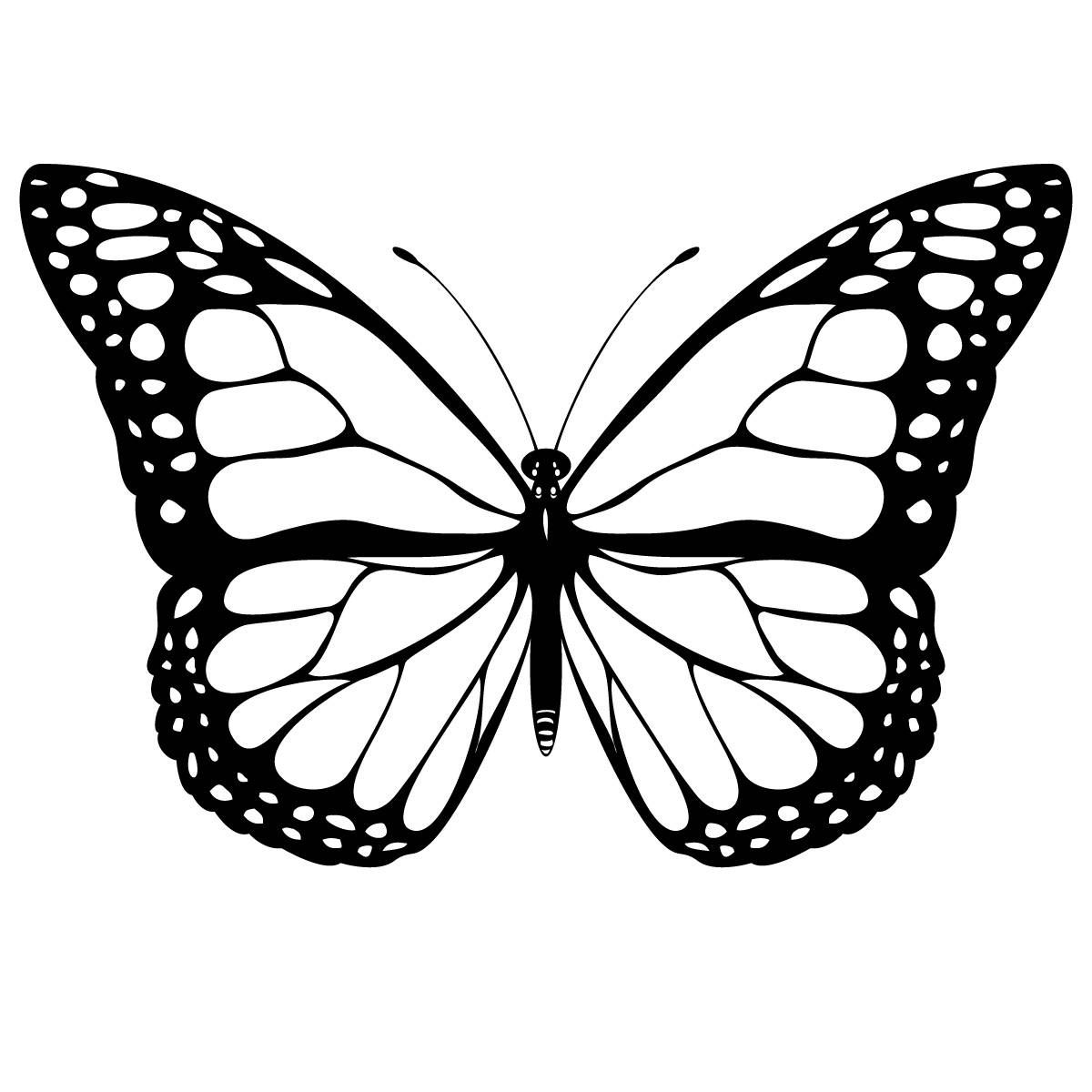 Monarch Butterfly Free Coloring Pages (color in before/after.