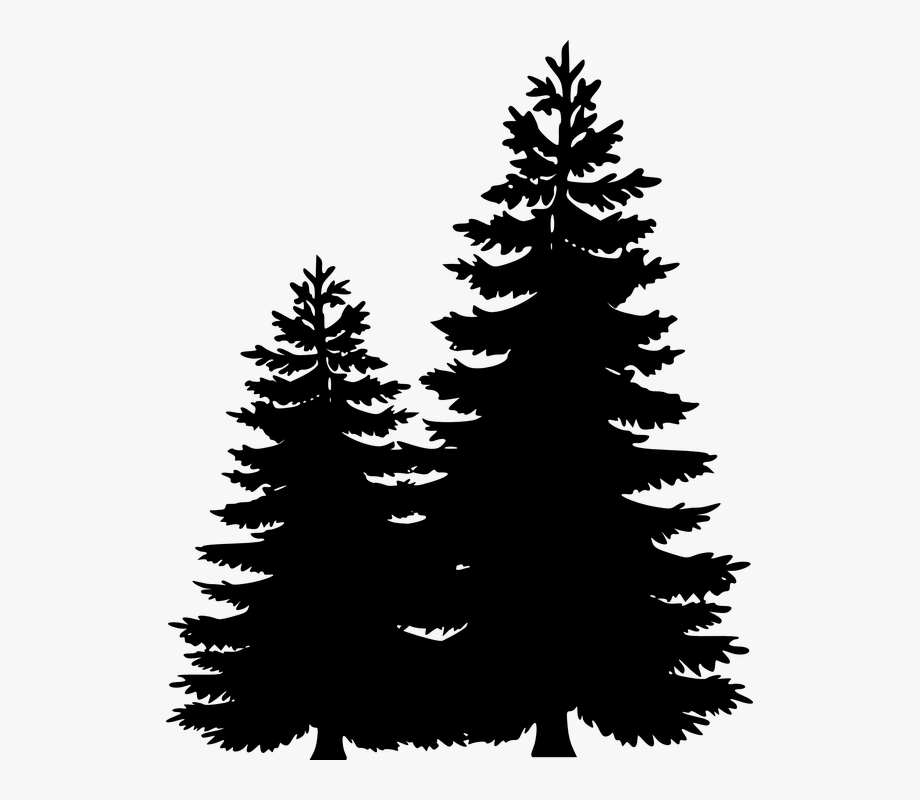 Clip Art Portable Network Graphics Pine Tree Image.