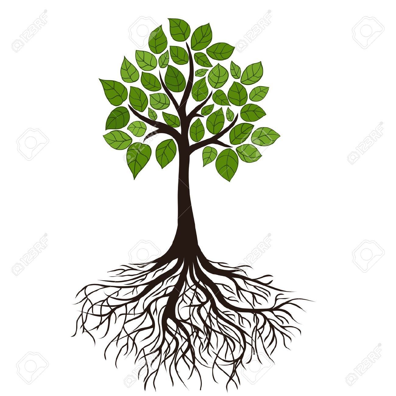 Tree Clipart With Roots at GetDrawings.com.