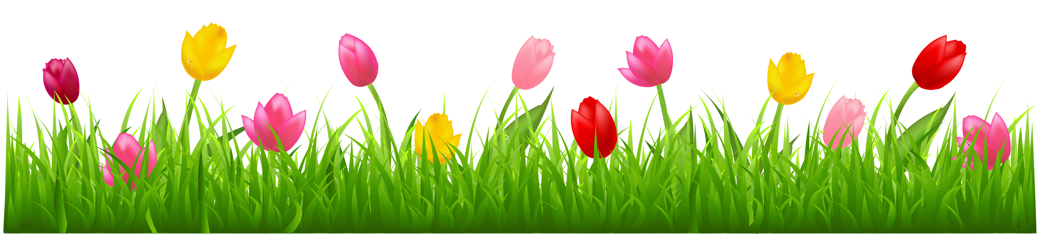 Free Spring Tulips Cliparts, Download Free Clip Art, Free.