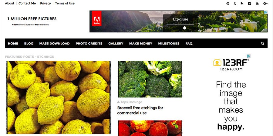 30 free public domain image websites.