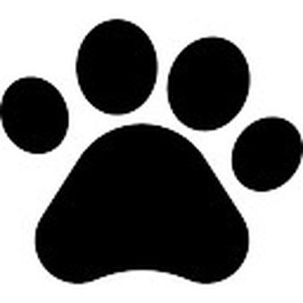 Animal Print Vectors, Photos and PSD files.